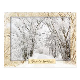 Winter-Märchenland Postkarte
