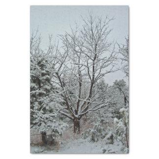 Winter-Märchenland Seidenpapier