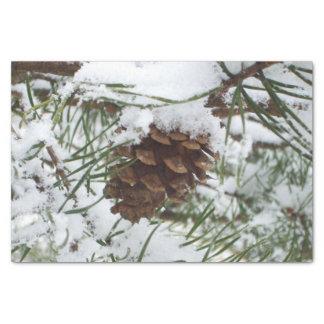 Winter-Natur-Fotografie des Snowy-Kiefern-Kegel-I Seidenpapier
