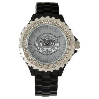 Winter-Park-graue Uhr
