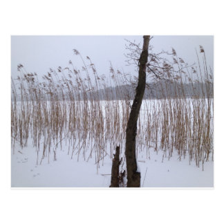 Winter Postkarte