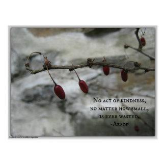 Winter-rote Beeren u. Äsop-Güte-Zitat Postkarte