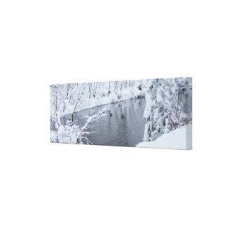 Winter-Schnee-Landschaft eingewickelte Leinwand Galerie Faltleinwand