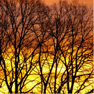 Winter-Sonnenaufgang Fotoskulptur Ornament