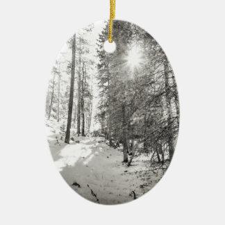 Winter-Sonnenschein-Waldschatten des Graus Keramik Ornament