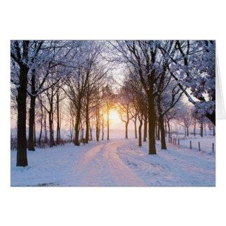 Winter-Sonnenuntergang Grußkarte
