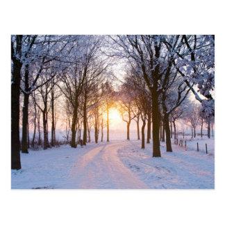 Winter-Sonnenuntergang Postkarte