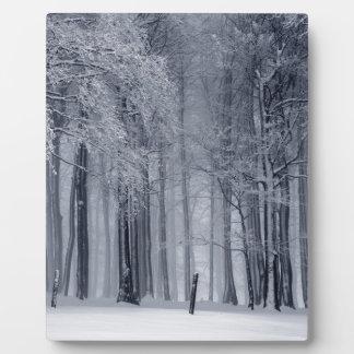 Winter-Szene Fotoplatte