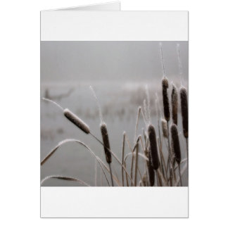 Winter-Szenemattierte Cattails Karte