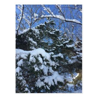 Winter-Szenen-Postkarte Postkarte