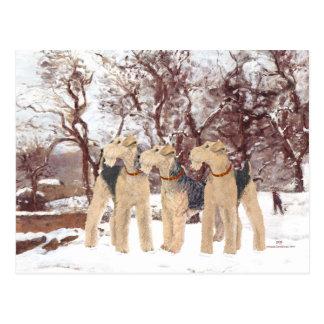 Winter-Tag Postkarte