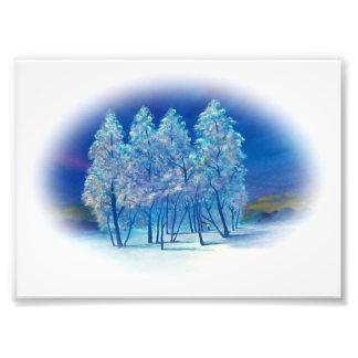 Winter-Tannenbaum-abstrakte Waldgrafik Photo Druck