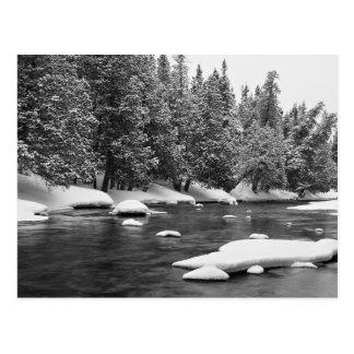 Winter themenorientiert, schönes gefrorenes postkarte