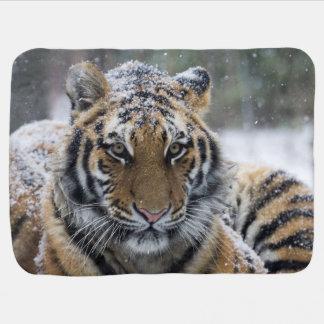 Winter-Tiger-Gesicht Babydecke