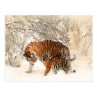 Winter-Tigerpostkarte Postkarte