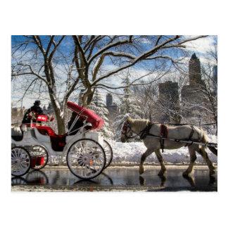 Winter-Wagen-Pferde Postkarte