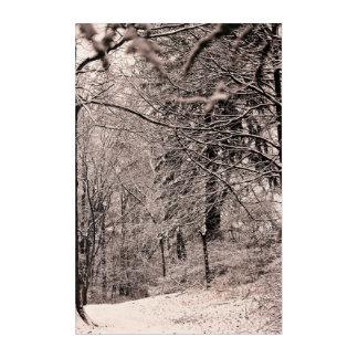 Winter-Wald Acryl Wandkunst