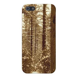 Winter-Wald Freetown Massachusetts Hülle Fürs iPhone 5