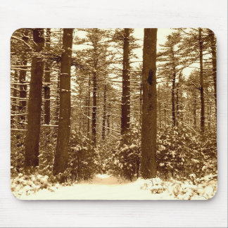 Winter-Wald Freetown Massachusetts Mousepad