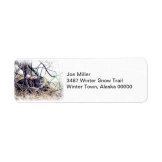 Winter-Waldkatze im Schnee-Aufkleber