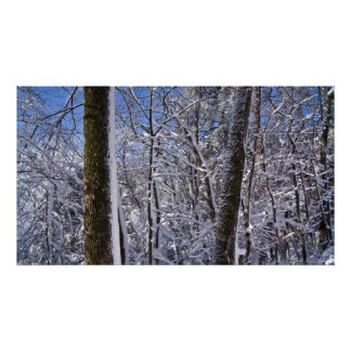 Winter-Wand-Eis und Schnee-Baum-Plakat Poster