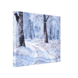 Winter-Weg Leinwanddruck