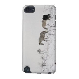 Winter-wilde Pferde im Schnee-Fall iPod Touch 5G Hülle