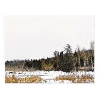 Winter-Wildnis Postkarte