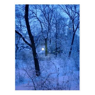 Winter Wonder Land Postkarte