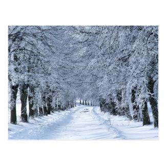 Wintergasse Postkarte