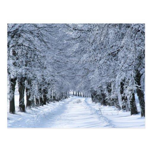 Wintergasse Postkarten