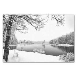 Winterlandschafts-Seidenpapier Seidenpapier