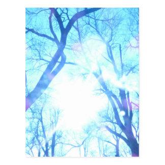 Wintermorgen Postkarte