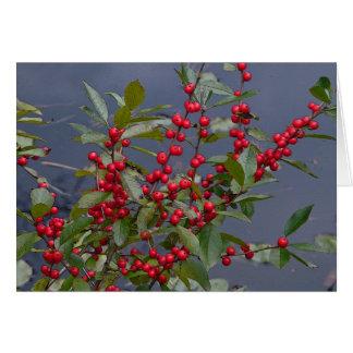Winterurlaub-Karte - rote Beeren Mitteilungskarte