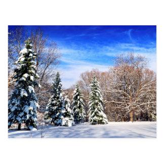 Winterwald Postkarte