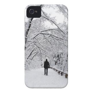 WinterWhiteout iPhone 4 Hüllen