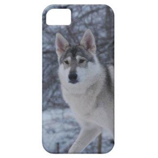 Winterwolf Schutzhülle Fürs iPhone 5
