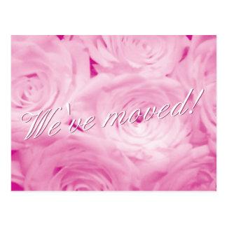 Wir haben Postkarten mit rosa Rosen-Blumen bewegt