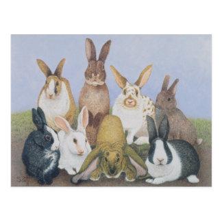 Wir sind alle Ohren Postkarte