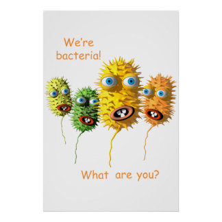 Wir sind Bakterien Poster