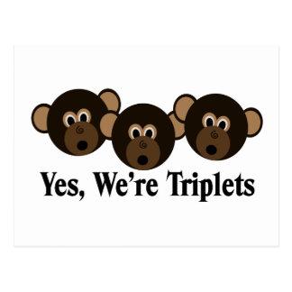 Wir sind Dreiergruppe-Affen Postkarte
