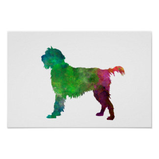 Wirehaired Pointing Griffon Korthals im Watercolor Poster