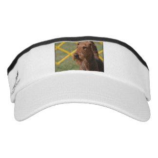 Wirklich niedlicher Airedale-Terrier Visor