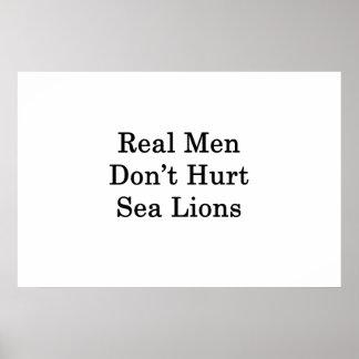 Wirkliche Männer verletzen nicht Seelöwen Poster