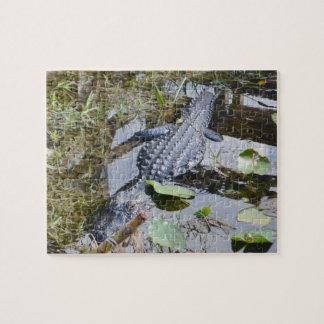 Wirkliches Alligatorpuzzlespiel für das jüngere Puzzle