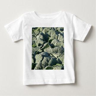 Wirsingkohl-Pflanzen auf einem Gebiet Baby T-shirt