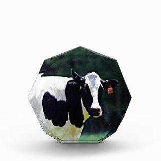 Wisconsin-Milchkuh Auszeichnung