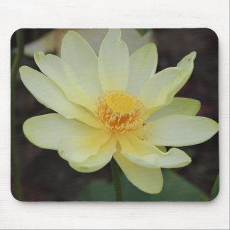 Wisconsin-Wasser-Lilien-Mausunterlage-Entwurf #2 Mousepad