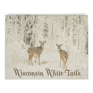 Wisconsin-Weiß-Schwänze Abreißkalender