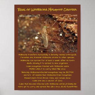 Wolbachia Moskito-Kontrollen-Risiken durch Poster